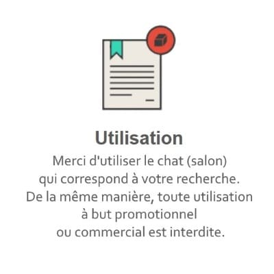 Règles du Tchat Gratuit de Rencontre-Ecolo.eu